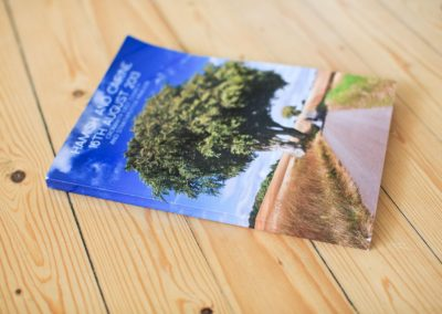 Memento Book Sample Image 4