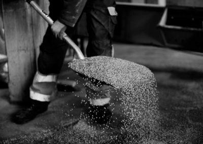 Tidying the malting floor at bairds malt, pencaitland