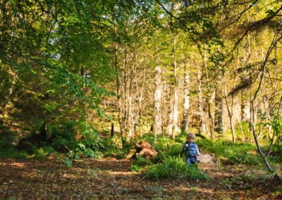 a young child photographed in the woods outside of stornoway